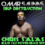 Self Destruction (Chris Salas - Black SAX Power Remix 2K11)