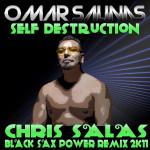 Self Destruction (Chris Salas - Black SAX Power Remix 2K11)