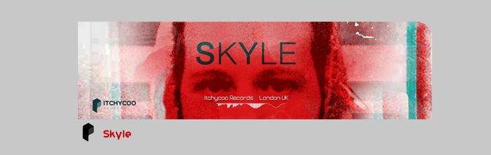Skyle Artist