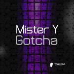 Mister_Y---gotxa----